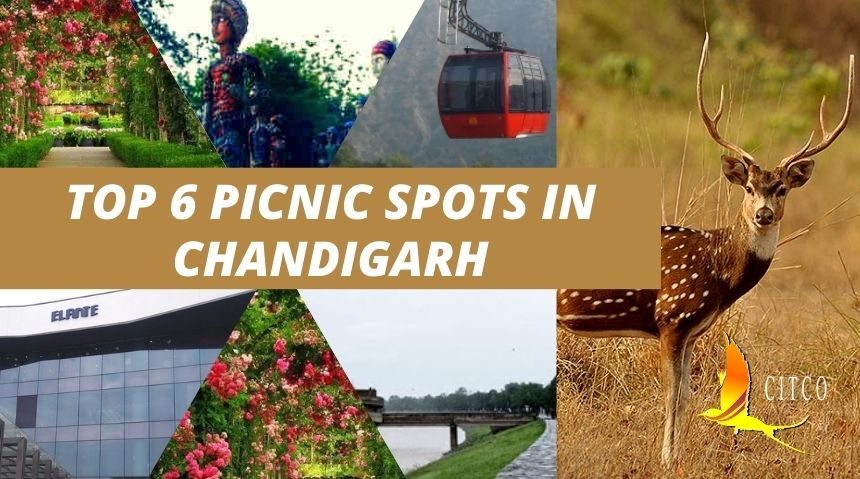 TOP 6 PICNIC SPOTS IN CHANDIGARH