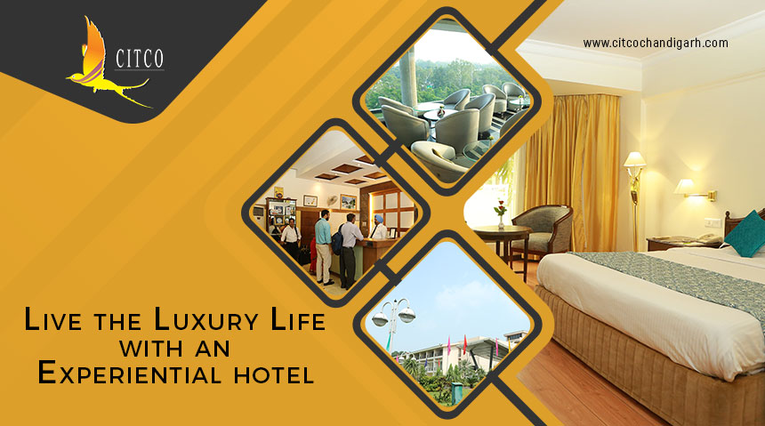 Live the Luxury Life with an Experiential Hotel.
