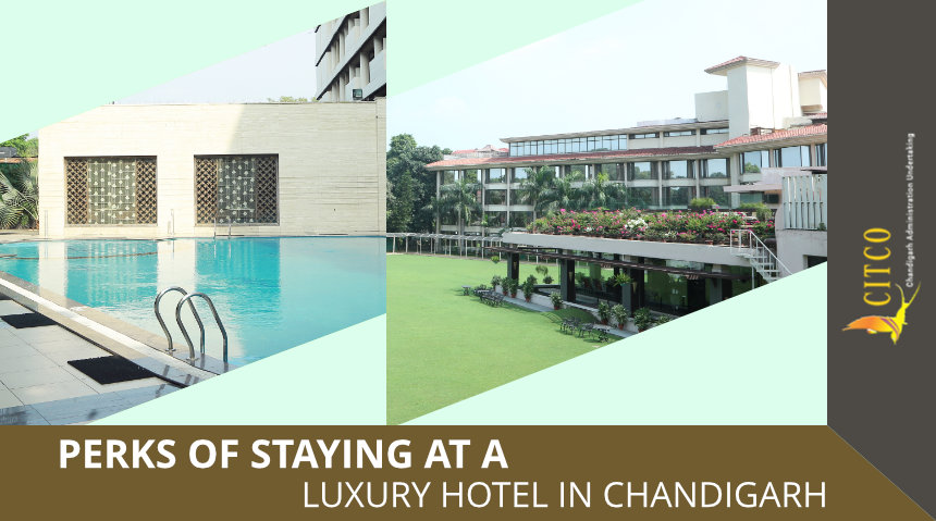 Perks Of Staying At A Luxury Hotel In Chandigarh